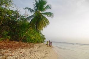 Une jolie plage, peu fréquentée la semaine.